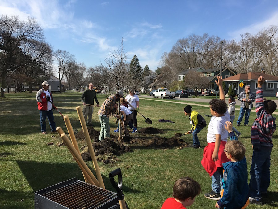 Tree Planting in Ferndale, MI